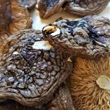 Order Amanita muscaria safely in Captiva, Amanita muscaria effects in Venice, where to find Amanita muscaria in Safety Harbor, Amanita muscaria for sale Vero Beach.